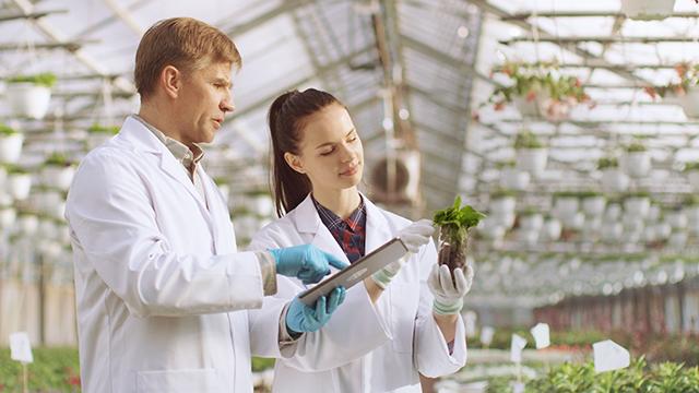 applicazioni - agriculture